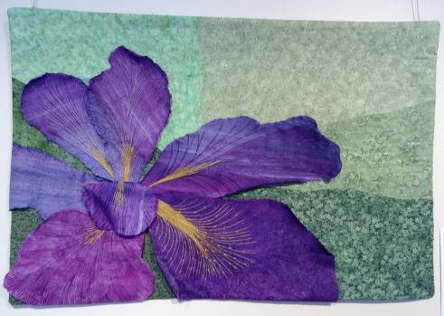 HerbstD-Iris