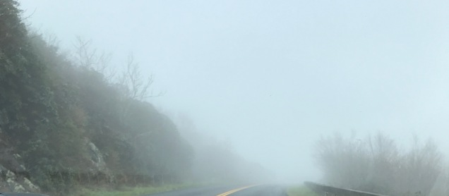 Entering the Clouds on the Blue Ridge Parkway
